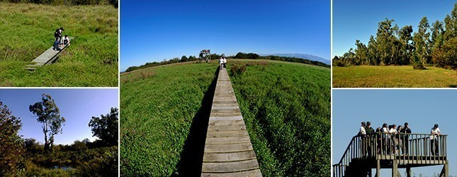 Kobuleti Protected Areas Tourist Trails