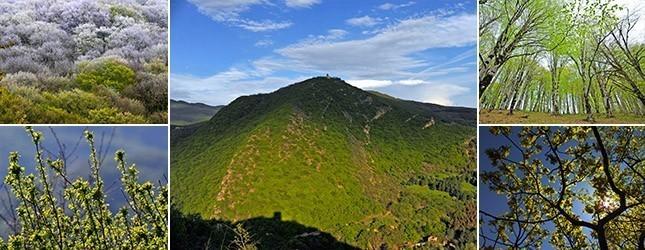 Туристические тропы Тбилисского Национального Парка